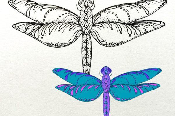 DragonflyDrawing_comp